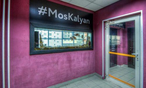 moskalyan-v-sokolnikah_807
